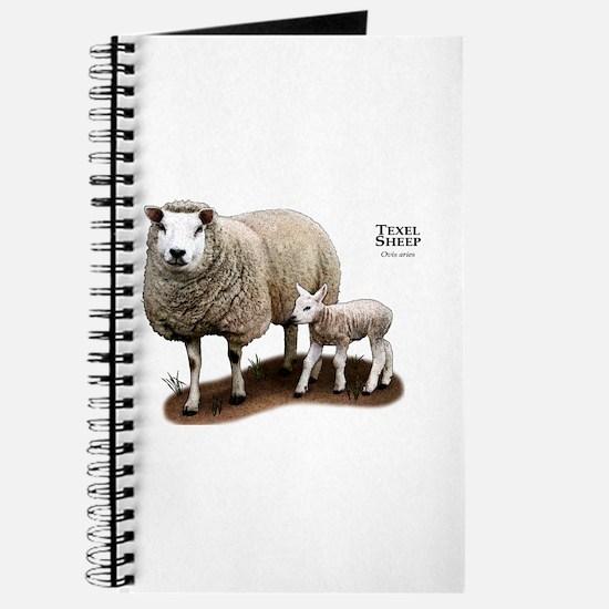 Texel Sheep and Lamb Journal
