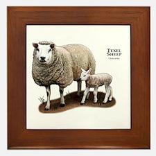 Texel Sheep and Lamb Framed Tile