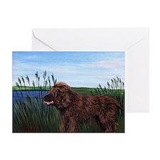 Irish Water Spaniel Dog Greeting Cards