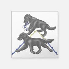 Flat Coated Retrievers Agility Sticker