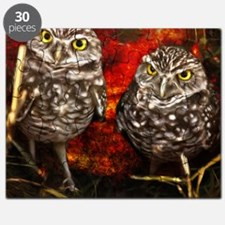 The Burrowing Owls Puzzle
