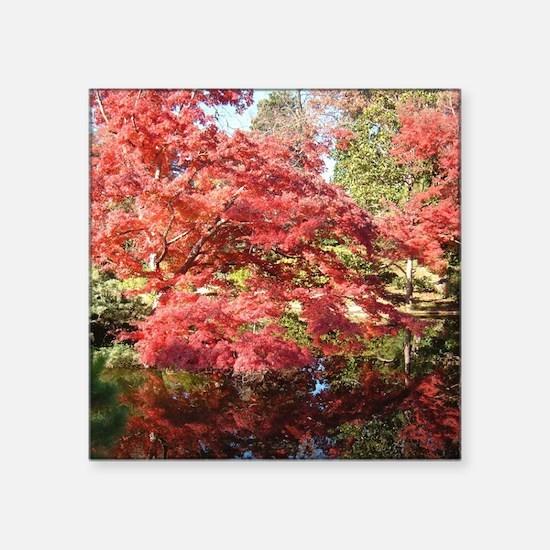 Brilliant Fall Colors Sticker