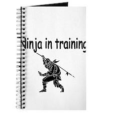 Ninja in training Journal