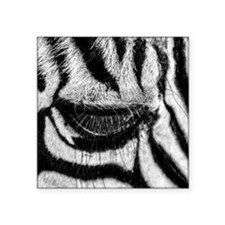 "Zebra Eye Square Sticker 3"" x 3"""