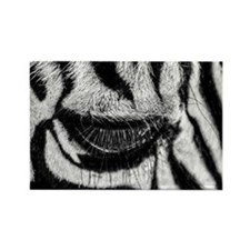 Zebra Eye Rectangle Magnet