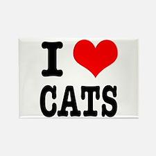 I Heart (Love) Cats Rectangle Magnet