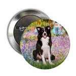 Garden & Border Collie 2.25