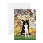 Spring & Border Collie Greeting Cards (Pk of 10)