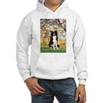 Spring & Border Collie Hooded Sweatshirt