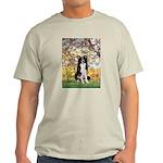 Spring & Border Collie Light T-Shirt