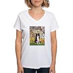 Spring & Border Collie Women's V-Neck T-Shirt