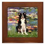 Lilies & Border Collie Framed Tile