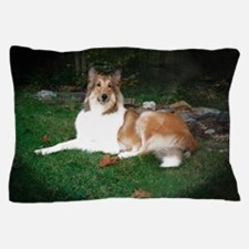 Collie laying Pillow Case