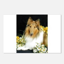 Collie Flowers Postcards (Package of 8)