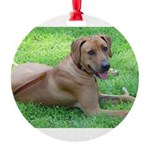Ridgeback Round Ornament
