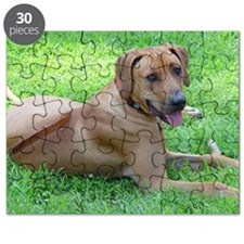 Ridgeback Puzzle