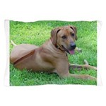 Ridgeback Pillow Case