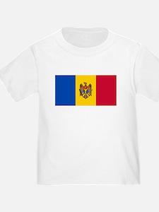 Flag of Moldova T