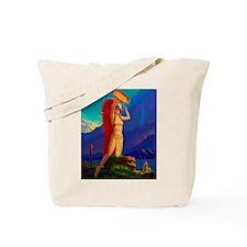 Indian Woman Pin Up Tote Bag
