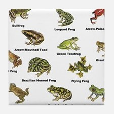 Frog and Toad Types Tile Coaster