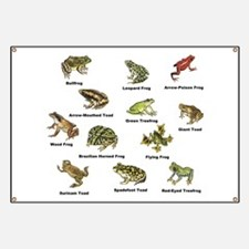 Frog and Toad Types Banner