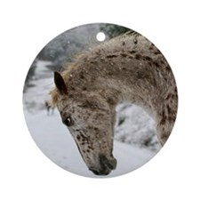 appaloosa in the snow Ornament (Round)