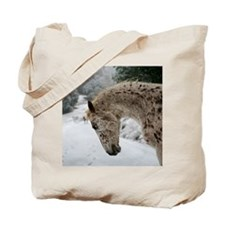 appaloosa in the snow Tote Bag