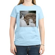 appaloosa in the snow T-Shirt