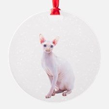 Pink Beauty Ornament