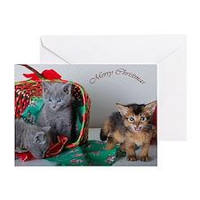 christmas card with kitties Greeting Card