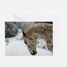 Not Happy In The Snow 4X6 Greeting Cards