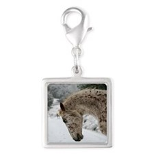 Appaloosa In The Snow Charms