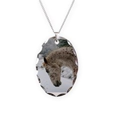 appaloosa in the snow Necklace