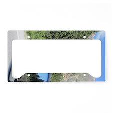 Forward and Back License Plate Holder