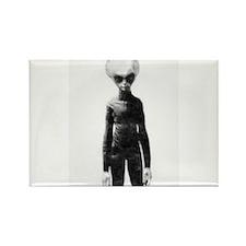 Skinny Bob Grey Alien Magnets