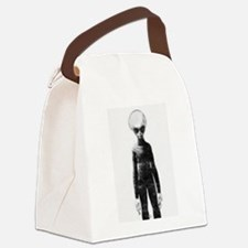 Skinny Bob Grey Alien Canvas Lunch Bag