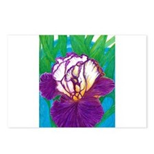 Purple Bearded Iris Postcards (Package of 8)
