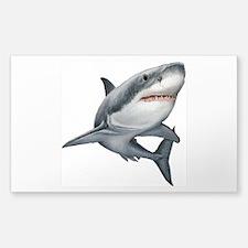 Shark Sticker (Rectangle)