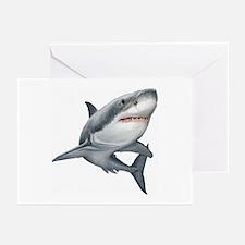Shark Greeting Cards (Pk of 10)