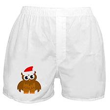 Christmas owl cartoon Boxer Shorts