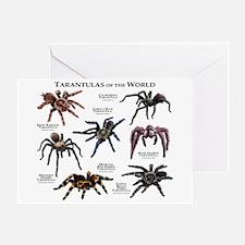 Tarantulas of the World Greeting Card