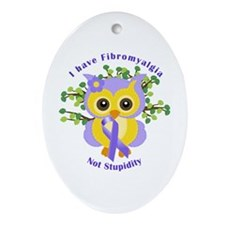 I have Fibromyalgia Ornament (Oval)