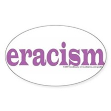 eracism.jpg Decal