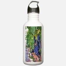 Sonoma Valley Water Bottle