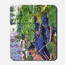Sonoma Valley Mousepad