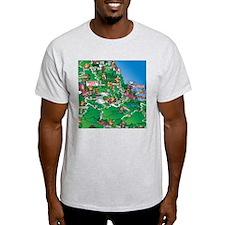 Mexico City to Veracruz Mexico T-Shirt