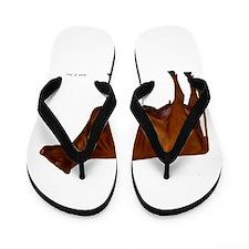 Shorthorn Cow Flip Flops