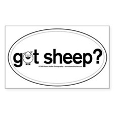 got Sheep? Oval Decal