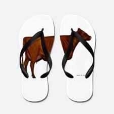 Milking Shorthorn Flip Flops