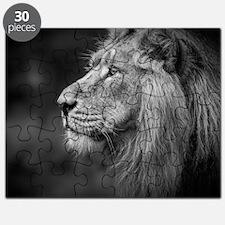 Asiatic Lion Puzzle